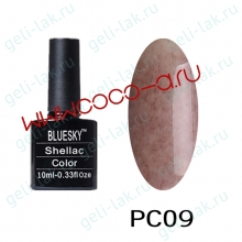 Shellac BLUESKY серия РС цвет 9